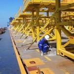 marine surveyor professional expert