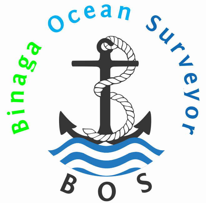 marine survey inspection services